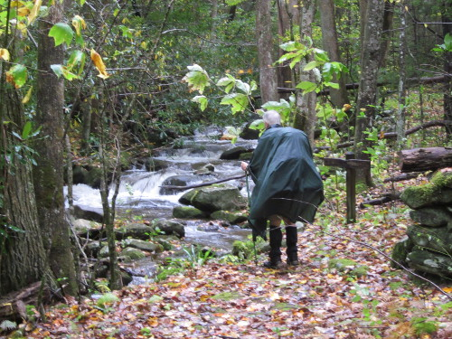Dad surveying a creek crossing