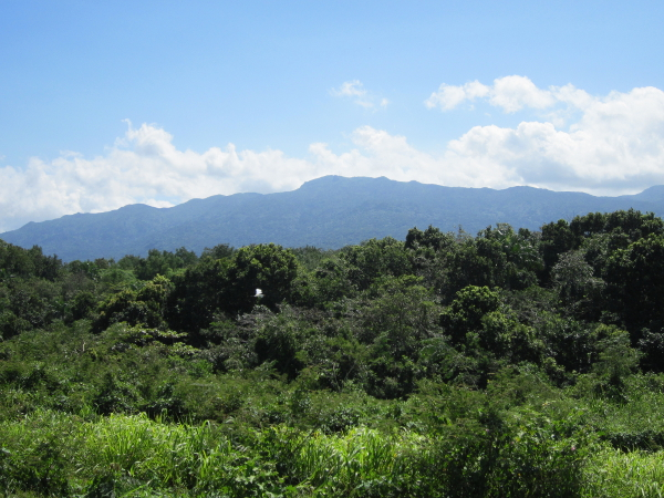 Distant view of El Yunque rainforest