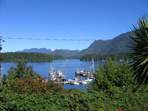 Our view from the Tofino Motel